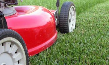Lawn Care in Burlington NC Lawn Care Services in Burlington NC Quality Lawn Care in Burlington NC